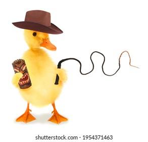 Cute cool duckling adventurer duck expler mit fedora hat hut und peitsche lustige konzeptuelle bild