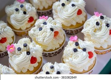 Cute cupcakes with vanilla cream in cupcake box