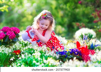 Cute curly little girl in a red summer dress working in the garden watering first spring flowers on a sunny day. Kids gardening. Child working in the backyard. Kid with water can. Children outdoors.
