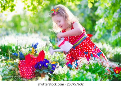 Cute curly little girl in a red summer dress working in the garden watering first spring flowers on a sunny warm day. Kids gardening. Children working in the backyard. Kid with water can.