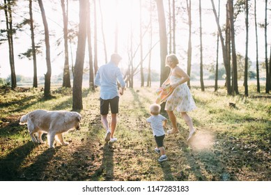 A cute family - mom, dad and son spend fun time outdoors with their dog.