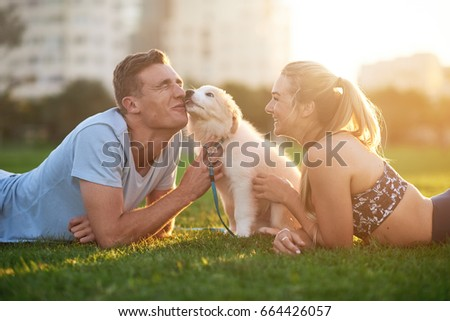 Cute fluffy border collie puppy licks owner, loving bonding moment happy smiling couple loving pet at sunset