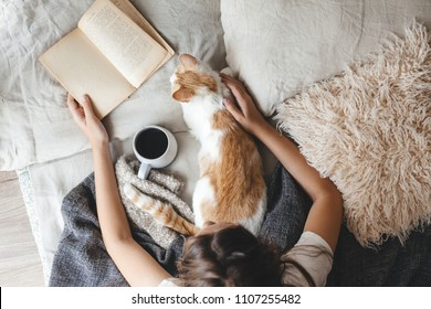 Cute ginger cat is sleeping in the bed on warm blanket. Cold autumn or winter weekend while reading a book and drinking warm coffee or tea. Hygge concept. Text on the pages is not recognizable.