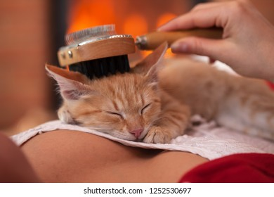 Cute ginger kitten sleep on woman chest having its fur brushed enjoying the care of owner