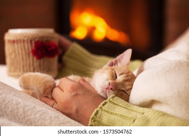 Cute ginger kitten in total relaxation, resting in the lap of his owner - a woman sitting in front of fireplace with a warm cup of drink. Enjoying life in the holiday season.