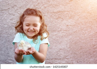 a cute girl in a blue t-shirt with dimples on her cheeks holds a chicken in her hands and squints with emotion and delight