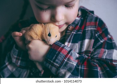 cute girl holding a hamster, children  and pets