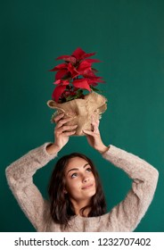 cute girl holding a poinsettia christmas plant against green background, festive winter celebration