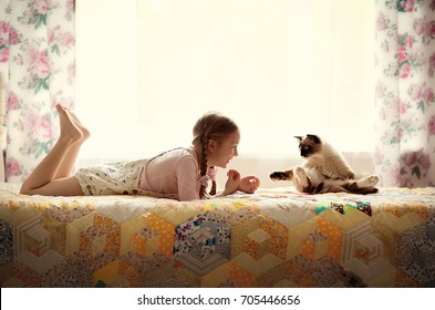 cute girl with pigtails plays with a cat