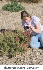 A cute girl taking macro pictures of small red flowers in a garden in the desert