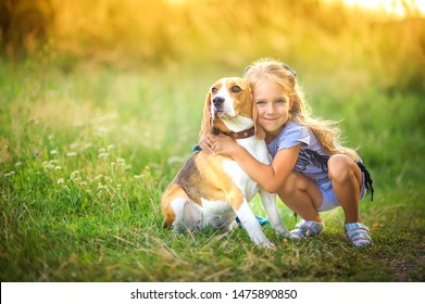 cute girl walks with her beagle puppy in the park at sunset, best friend