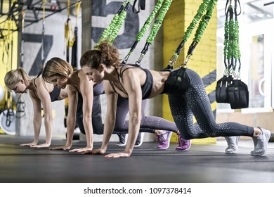 Cute girls are training with goflo-trainers in the gym. Women are leaning on the floor with their hands and toes. They are wearing the multicolored sportswear: pants, tops and sneakers. Horizontal.