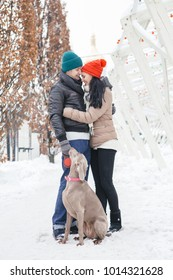 Cute happy loving couple of caucasian man and woman on a walk in snowy day with their weimaraner dog. Casual outfit, lifestyle images