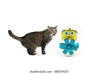 cute happy playing Cat with easter egg isolated on white