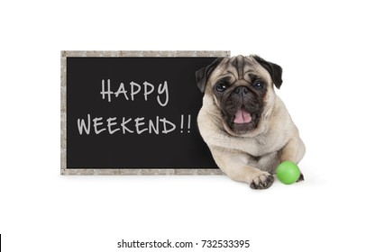 cute happy pug puppy dog with green ball and blackboard sign with text happy weekend, isolated on white background
