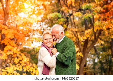 Cute happy senior couple hugging over autumn trees in background