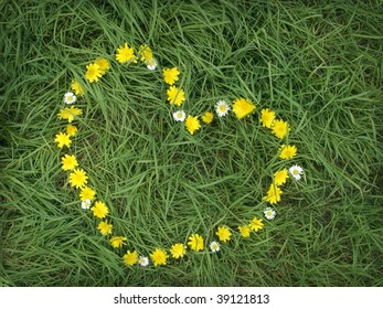 Cute heart of composed of dandelions and daisies in the grass