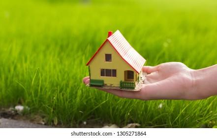 cute house on woman hand