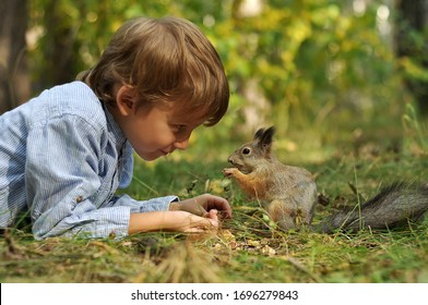 the cute kid boy feeding the squirrel in sunny forest