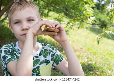 Cute Kid boy outdoors eating a sandwich