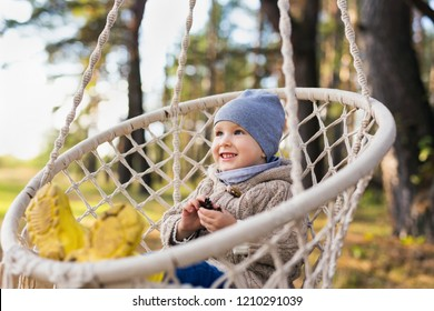 Cute kid swinging in a hanging chair in a forest in autumn