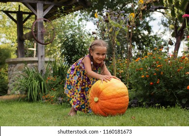 Cute little 5-6 years old girl rolling a huge orange pumpkin for Halloween decoration in the garden, funny summer outdoor