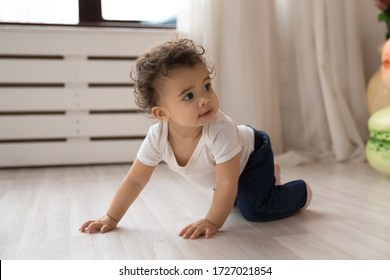 Cute little african American toddler infant go on hands and knees learn to walk on floor at home, small biracial baby girl child creep on fours, make first steps play indoor, childcare concept