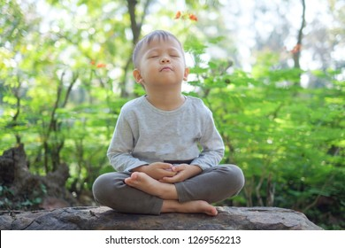 Cute little Asian 2 - 3 years old toddler baby boy child with eyes closed, barefoot practices yoga & meditating outdoors on nature in springtime, Beginner Meditation, Healthy lifestyle concept