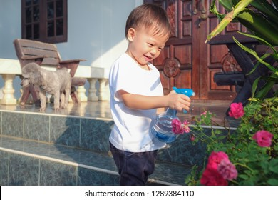 Cute little Asian 2 - 3 years old toddler boy child having fun using spray bottle watering pink rose flowers at home in sunny morning, Little home helper, chores for kids, child development concept