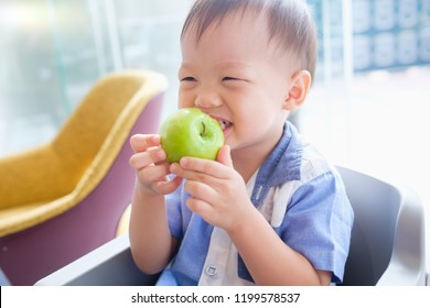 Cute little Asian 30 months / 2 years old toddler baby boy child sitting on high chair holding, biting, eating an unpeeled whole green apple as breakfast in restaurant, Good food for kids concept