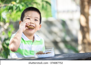 Cute little asian boy eating cookie in park with sunshine