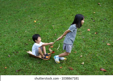 Cute little Asian boy and girl playing outdoor with dried palm tree leaf.