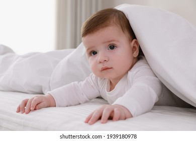 Cute little baby in bed under soft blanket indoors