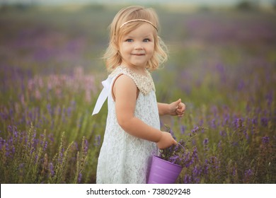 Cute little baby blong girl walking posing on meadow of forest wild lavender wearing stylish white drerss and holding purple bucket basket teddy bear friend in tiny hands alone