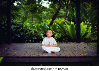 cute little baby boy, kid meditating in rainy forest park, sitting on wooden decks