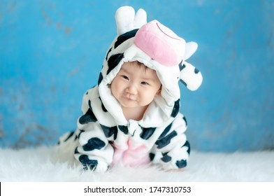 Cute Little Baby in Cow Costume. Asian Baby wearing Cow Suit for Halloween