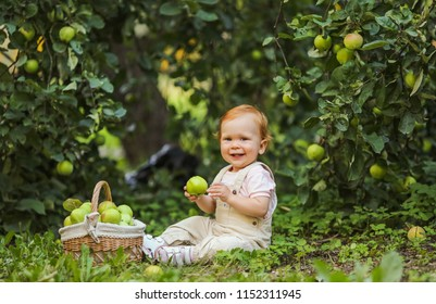 Cute little baby  girl playing with full basket of apples in a green grass background at sunny day