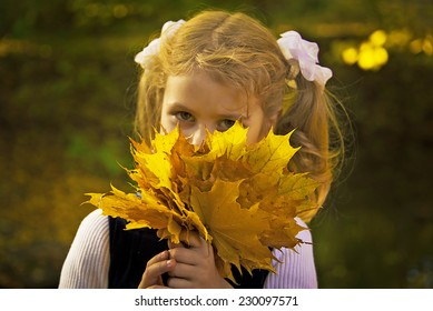 Cute little beautiful girl holding bouquet of autumn maple leaves. Close-up. Adorable smiling kid with two blond ponytail, outdoor autumn portrait in park.
