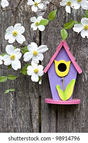 Cute little birdhouse on rustic wooden fence with beautiful white Dogwood blooms