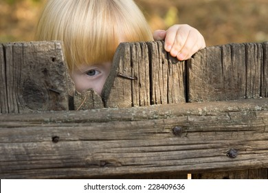 Cute little blond girl peering through a gap in a broken board in a rustic wooden fence with one eye
