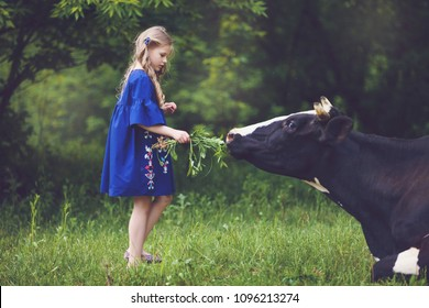 Cute little blonde girl playing with cow in forest