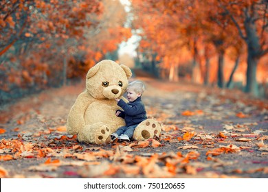 cute Little Boy in autumn park with big Brown Teddy bear