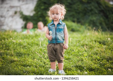 Cute little boy with blond hair at summer day standing on green meadow, holding dandelion