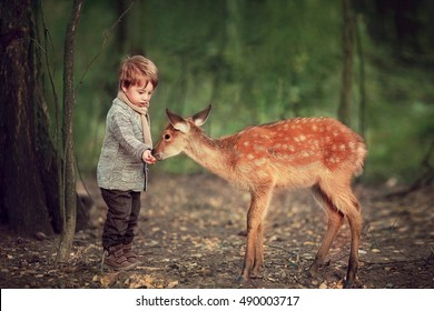 Cute little boy is feeding a baby fawn in the forest.  Image with selective focus and toning