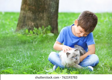 Cute little boy with fluffy cat outdoors