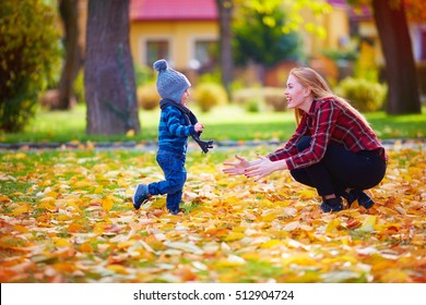 cute little boy having fun with mother in autumn park