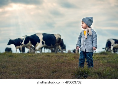 Cute little boy in knitted scarf and hat is looking at a herd of cows in the country. Image with selective focus and toning