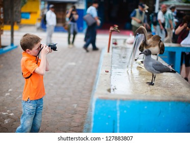 Cute little boy photographing at seafood market