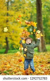 Cute little boy playing with leaves in autumn park