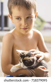 Cute little boy posing with a kitten in his hands, backlit of the sun